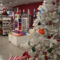 Fun for all the family this christmas at Haynes